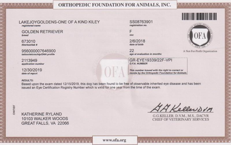 Kiley's Eye Certification